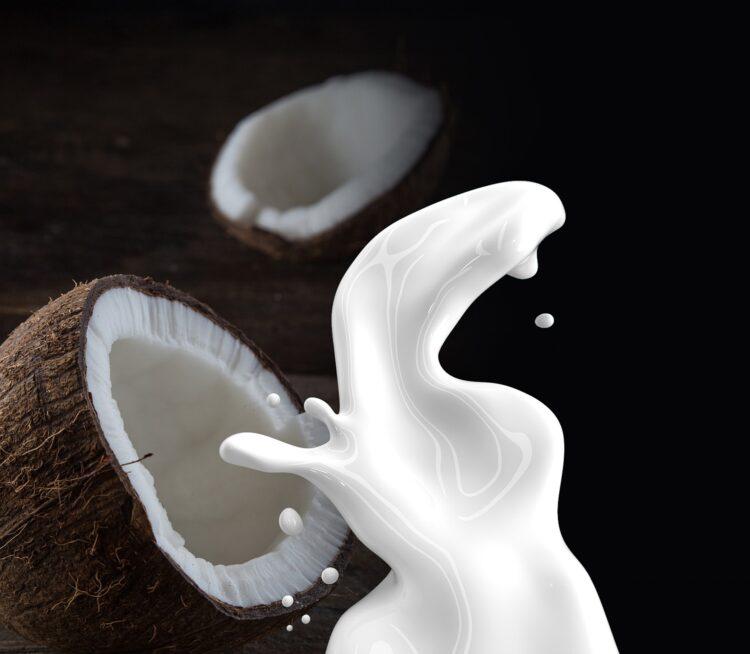 Kokosnuss Kokosmilch