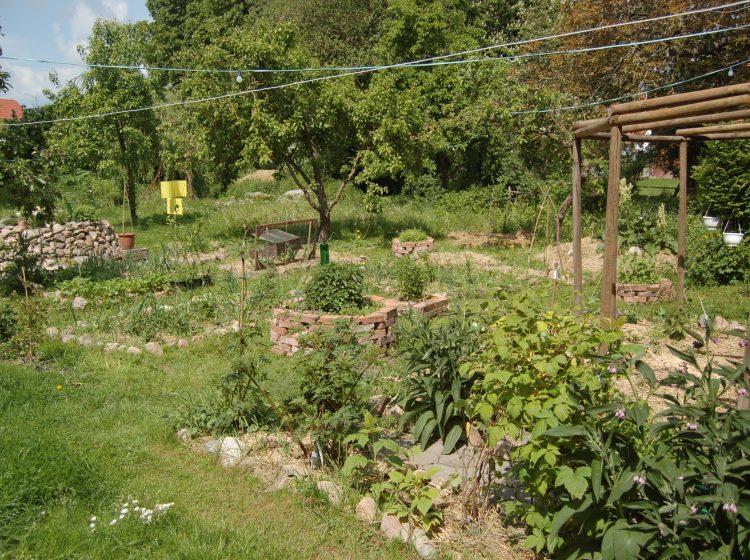 Permakultur-Garten