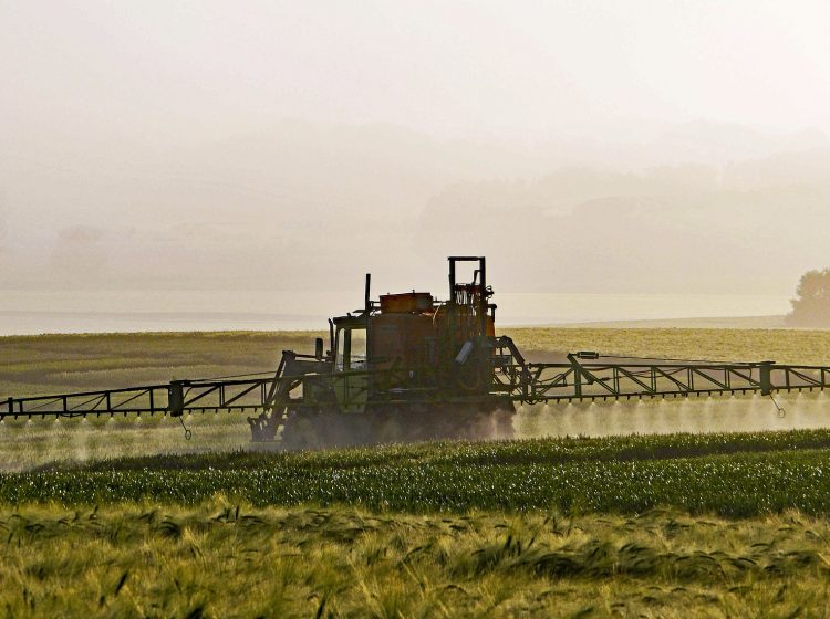 Pestizide Acker