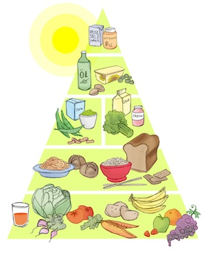 Vegane Lebensmittelpyramide (© Vegane Gesellschaft Österreich, www.vegan.at)