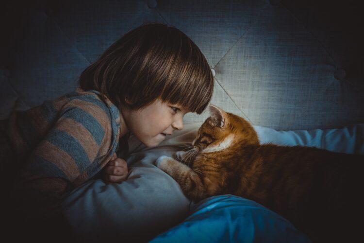 Kind Katze
