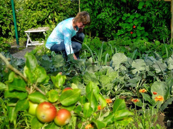 """Susanne Heine """"Peaceful Gardening"""""""