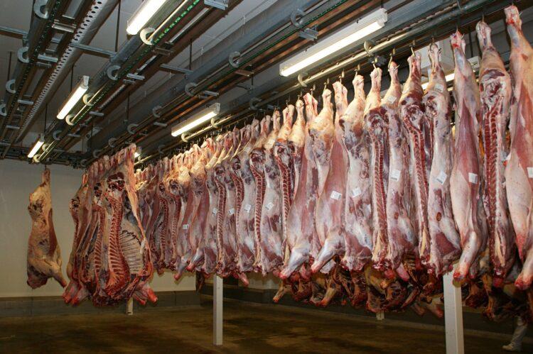 Fleisch Schlachthof