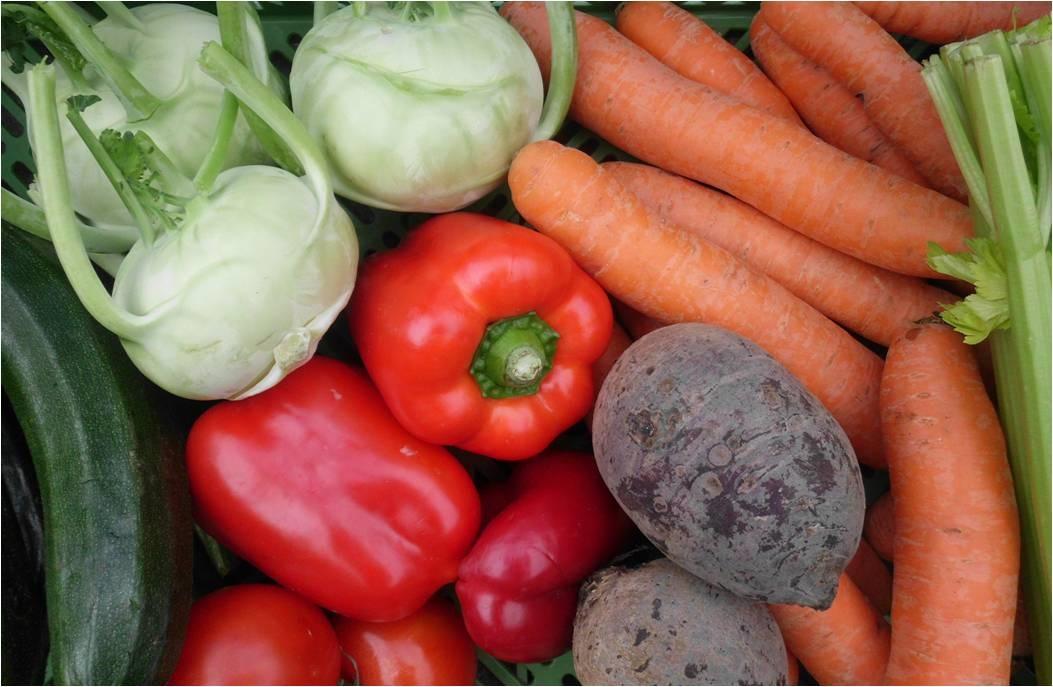 Gemüse © antjeduewel pixelio.de