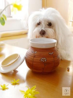 Leckerli-Dose von Dog Filou's