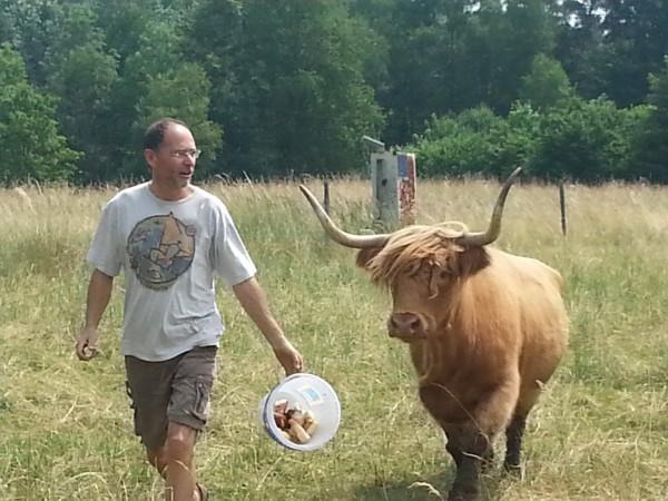 Hubert mit einem seiner Rinder