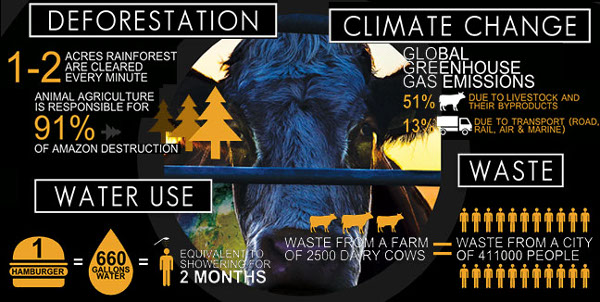 Infographic Cowspiracy