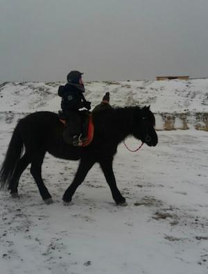 Andreas- Kinder lieben Pferde