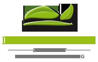 Logo Das Grüne Hotel zur Post