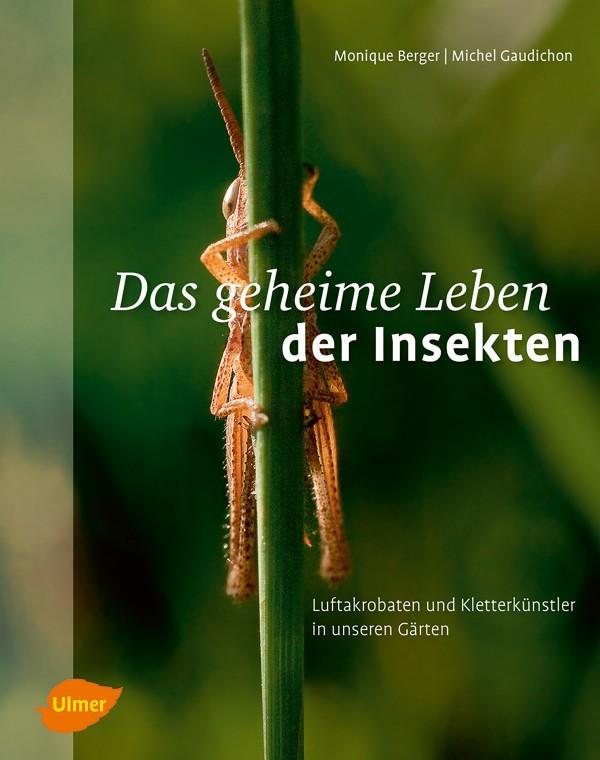 insekten-cover