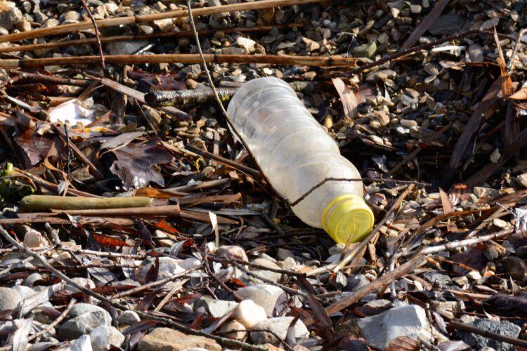Plastikflasche Umweltverschmutzung