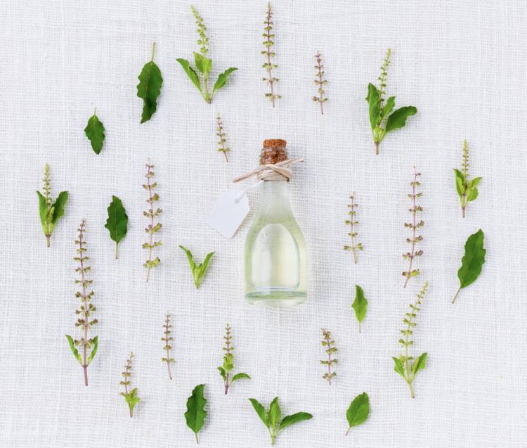 Naturkosmetik pflanzliche Rohstoffe Kräuter