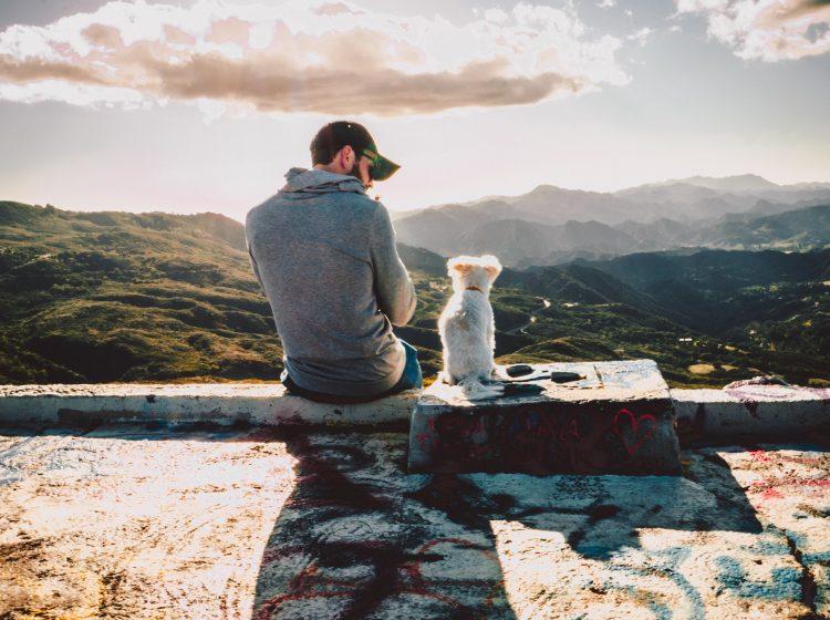 Hund und Mensch: eine Freundschaft für's Leben (Xan Griffin via Unsplash)