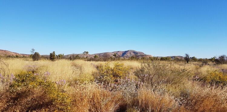 Outback, Australische Landschaft