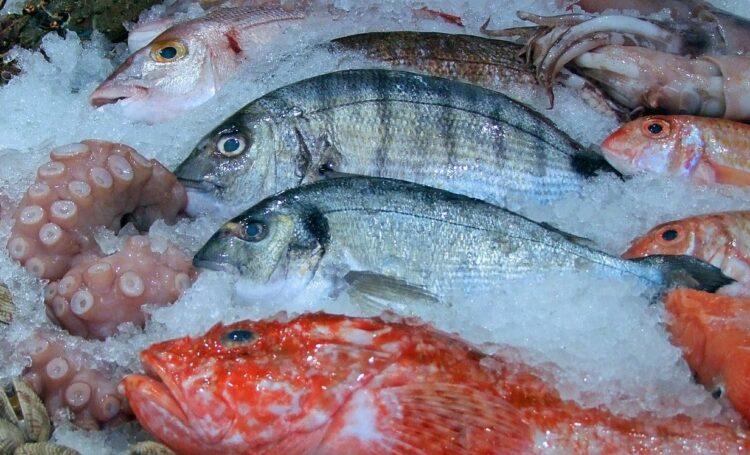 Fisch-Gütesiegel