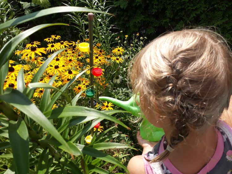 tierfreundlicher Garten