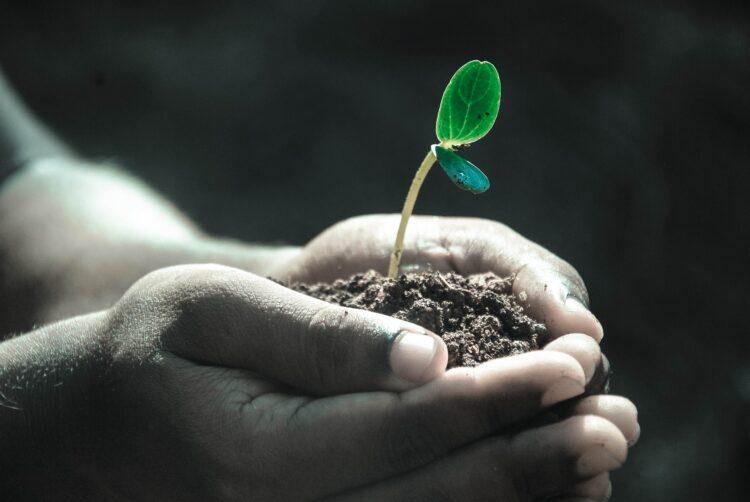 Umweltschutz ist Menschenschutz