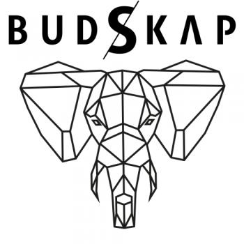 Logo Budskap