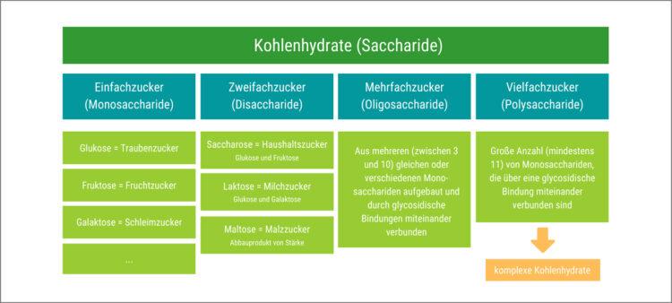 Grafik zeigt eine Übersicht der verschiedenen Arten von Kohlenhydraten