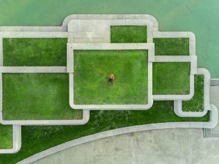Urbane Wiese am Dach (Foto: Unsplash (c) Martin Reisch)