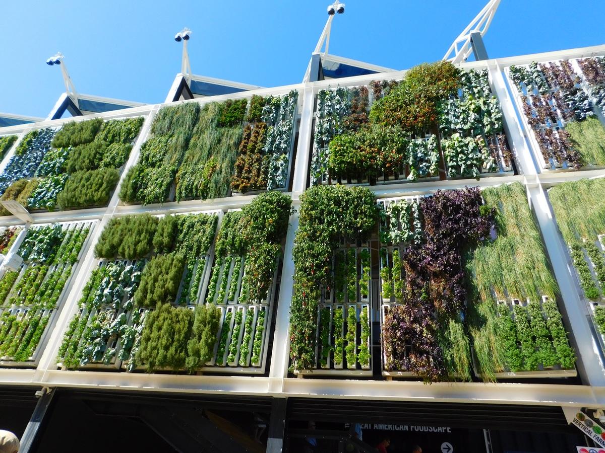 Begrünte Fassade mit Gräsern, Farnen und Moosen
