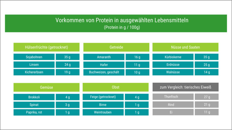 Vorkommen von Protein in ausgewählten Lebensmitteln
